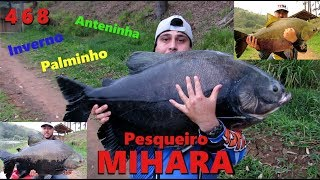Final de inverno no Pesqueiro Mihara - Fishingtur na TV 468
