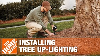 Installing Tree Up-Lighting | The Home Depot