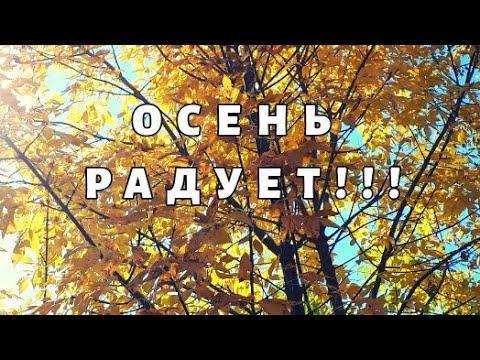 Осень радует своими пейзажами))Золотая осень))Природа
