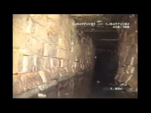Alien caught on tape in sewers