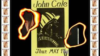 JOHN CALE - GRAHAM GREENE #(Free the World) Make Celebrities History