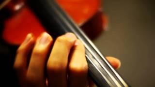 Akahitoha(紅一葉)-Megurine Luka (Violin Cover)
