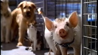 Babe: Pig in the City (1998) Video
