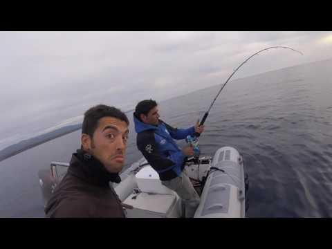 La pesca su un grayling su un iyusa