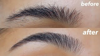 HOW TO GROOM + SHAPE YOUR EYEBROWS! (super Easy + At Home)