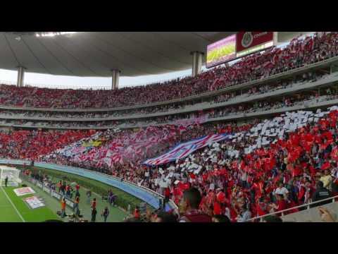 """""""Recibimiento de la Banda de Chivas (Clásico Nacional)"""" Barra: La Irreverente • Club: Chivas Guadalajara"""