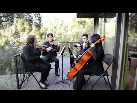My quartet playing Spring from the Four Seasons