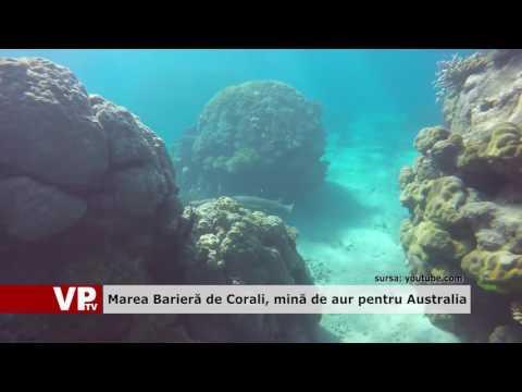 Marea Barieră de Corali, mină de aur pentru Australia