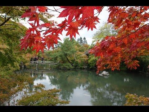 Philosophers Walk, Kyoto, Japan, October 26, 2013
