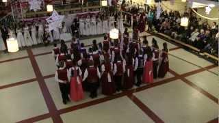 preview picture of video 'Bolyky Tamás Általános Iskola Ózd Felsős Farsang 2013 Palotás'