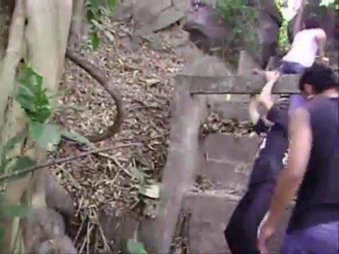 Hawaiian teens girls spanked