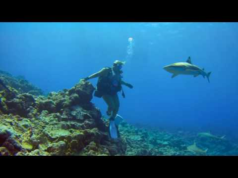 Diving YAP with Actionpro X8 4k