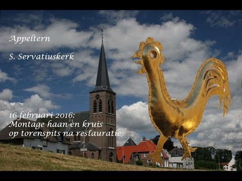 S.Servatius kerk Appeltern. Montage Haan en kruis torenspits.