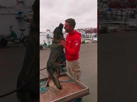 Bjurtjärn dating sweden