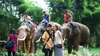 2017 Shrine of Household God Worship Ceremony by Patara Elephant Farm