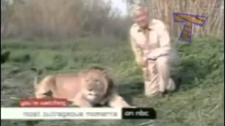 Funny Animals: Video Moments Of Animal Humor