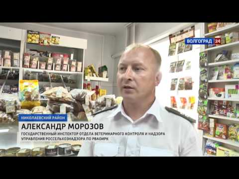 Сотрудники Россельхознадзора проверяют качество свинины в торговых точках Волгоградской области