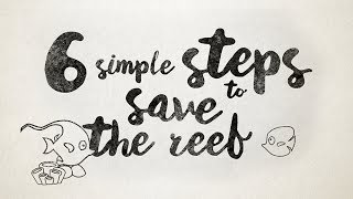 6 Simple Steps to Save the Reef | Protect the Great Barrier Reef!