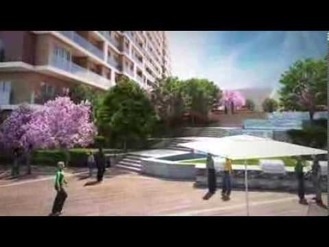 Tilia Suryapı Videosu