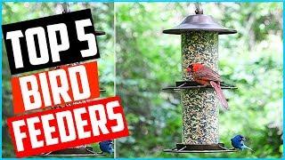 Top 5 Best Squirrel Proof Bird Feeders Reviews In 2020