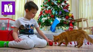 Макс наряжает ёлку на Новый Год 2017 Ждём тонну конфет в носках и Мурка грызёт белочку под ёлочкой