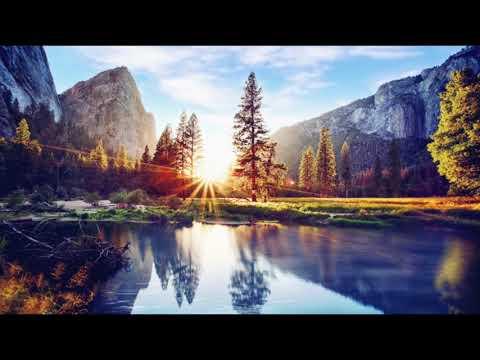 Sons da Natureza Passaros Agua Corrente Msica para Relaxar Tranquilizar Meditao Paz  Espirito