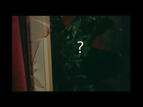 Zombi Horror -1981 Blooper?