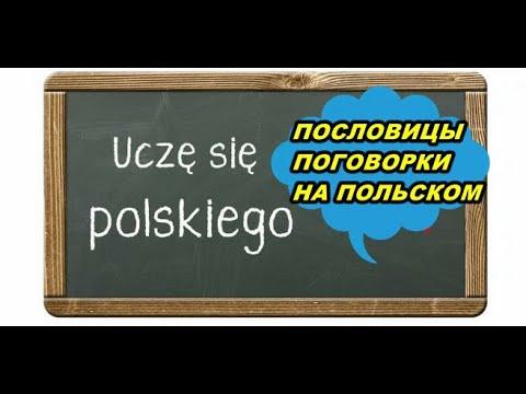 Польские пословицы сравниваем с русскими Польский язык. Польские выражения.
