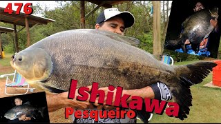 Os Tambacus Gigantes do Pesqueiro Ishikawa - Fishingtur na TV 476