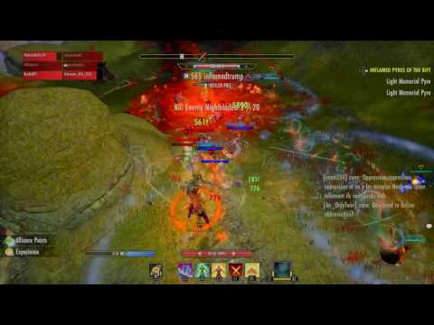 Video guardian tamplier build in action ak the zerg holder video guardian tamplier build in action ak the zerg holder gumiabroncs Gallery