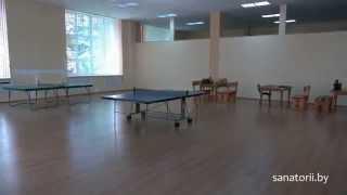 Санаторий Шинник - настольный теннис, Санатории Беларуси фото