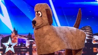 FIRST LOOK: Dudley the Dancing Dog | BGT 2018 | Kholo.pk