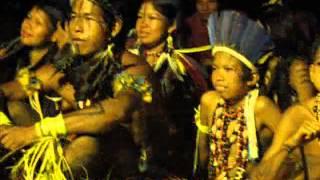 Uma história do povo Umutina