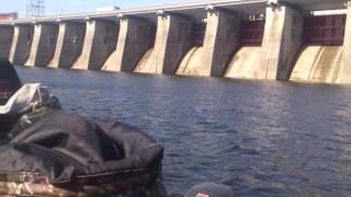 Запретная зона для рыбалки жигулевская гэс