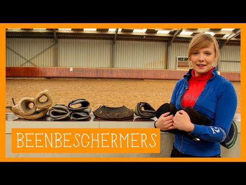 Beenbeschermers   PaardenpraatTV