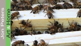 Beekeeping for Beginners- Adding Honey Supers - Update 6/12/2016