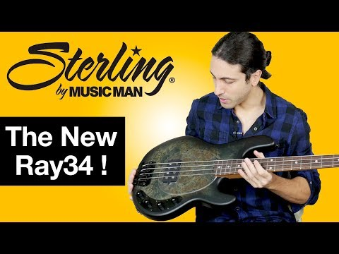 Sterling by Musicman Bass with a Roasted Maple Neck! - The New Ray34 Stingray