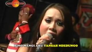 Download lagu Ilang Tanpo Aran Eny Sagita Mp3