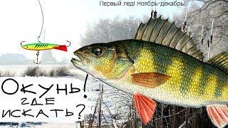 Рыбалка на нмр в ноябре декабре
