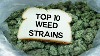 Top 10 Best Weed Strains 2017