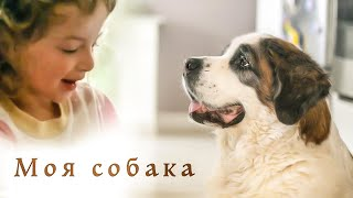 Моя собака - песня про собаку - клип 2019 песни для детей Наталия Лансере