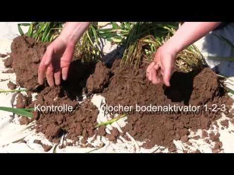 Plocher Bodenaktivator 1-2-3