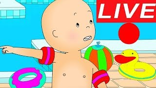 Caillou LEARNS TO SWIM   LIVE 🔴 Funny animated cartoon   Cartoons for children