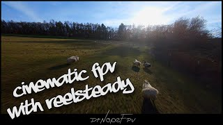 Cinematic FPV // ReelSteady GO Tryout! // FPV Freestyle Drone // DrNopeFPV