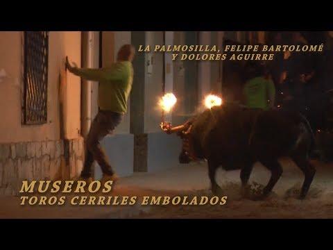 2018 04 14 Museros Vlc TOROS CERRILES EMBOLADOS
