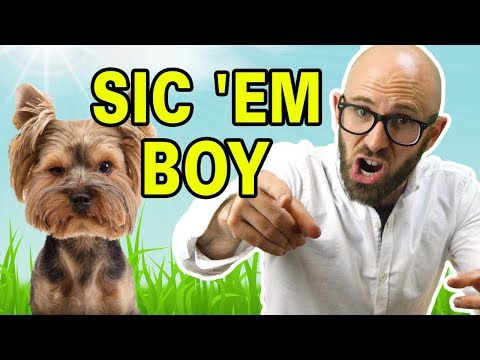 """Why Do We Say """"Sic 'Em"""" to Dogs to Get Them to Attack"""