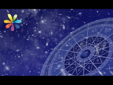 Что такое физическая совместимость в астрологии