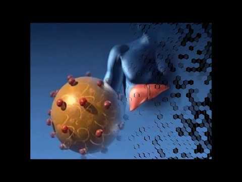 Гепатоцеллюлярный рак печени метастазы