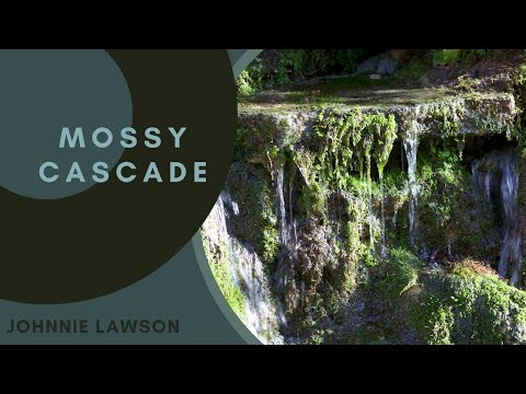 Nature Sounds-Forest Waterfall Sound-Relaxing Natural Birds Singing Music-Sleeping Relaxation