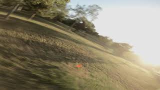 FPV with Frisbee